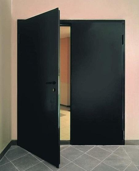 двери двухпольные металлические