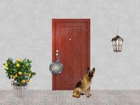 входная дверь для дачи эконом